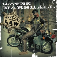 Cover of the track Marshall Law