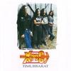 Cover of the album Timurbarat