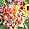 Couverture de l'album What the Spring?? - Single