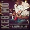 Cover of the album Bluesamericana