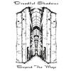 Couverture de l'album Beyond the Maze (Shadows Live in '98)