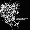 Cover of the album Pinecone Moonshine: Anomalous Fragments
