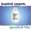 Couverture de l'album Inspiral Carpets: Greatest Hits