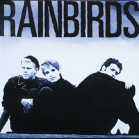 Cover of the track Rainbirds