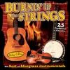 Couverture de l'album Sound Traditions: Burnin' Up The Strings