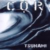 Couverture de l'album Tsunami