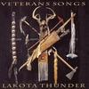 Couverture de l'album Veterans Songs