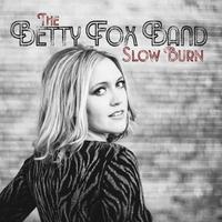 Couverture du titre Slow Burn