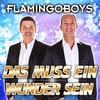Cover of the album Das muss ein Wunder sein - Single