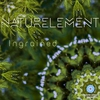Cover of the album Ingrained