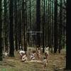 Cover of the album Lazare