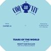 Cover of the album Tears of the world -EP