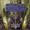Couverture de l'album Asunder