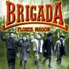 Couverture de l'album Brigada Flores Magon