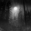 Couverture de l'album Besatt av maane og natt