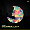 Cover of the album I Got What You Need - Single
