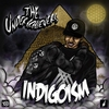 Cover of the album Indigoism