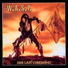 Couverture de l'album The Last Command