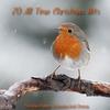 Couverture de l'album 20 All Time Christmas Hits (Essential Xmas)