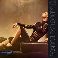 Couverture du titre Seductive Lounge, Vol. 14