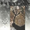 Cover of the album Nordland