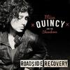 Couverture de l'album Roadside Recovery