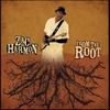 Couverture de l'album From the Root