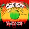Cover of the album Diseases Rebirth Riddim