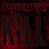 Couverture de l'album Kill