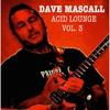Couverture de l'album Acid Lounge, Vol. 3