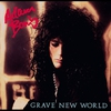 Couverture de l'album Grave New World