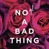 Couverture de l'album Not a Bad Thing - Single