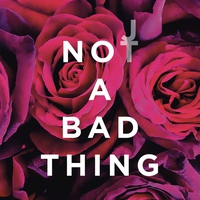 Cover of the track Not a Bad Thing - Single