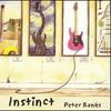 Couverture de l'album Instinct