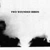 Couverture de l'album Two Wounded Birds