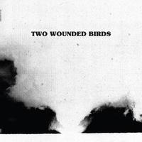 Couverture du titre Two Wounded Birds