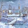 Couverture de l'album It's a Homestead Wintery Night