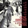 Couverture de l'album A Stranger In Town