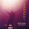 Couverture de l'album Samadhi