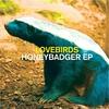 Couverture de l'album Honeybadger EP
