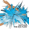 Couverture de l'album The Big Flow
