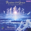 Cover of the album Realms of Grace: An Angelic Experience - Music for Healthy Living