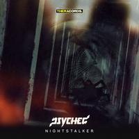 Couverture du titre Nightstalker - Single