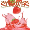 Couverture de l'album Lay Down With the Strawbs