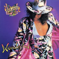 Cover of the track Wonderful