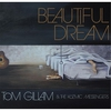 Couverture de l'album Beautiful Dream