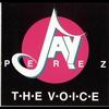 Couverture de l'album The Voice