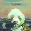 Couverture du titre To Slow (feat. Ashibah)
