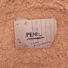 Cover of the track Pearl