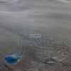 Couverture de l'album Bloodmoon - Single